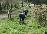 forking out remaining nettles