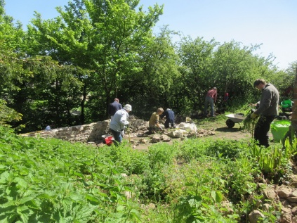 grubbing out nettles and rebuilding the perimeter wall