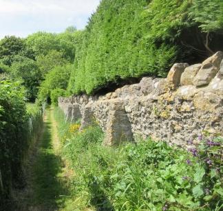 Hack's Way mown & weeded and vegetation trimmed back