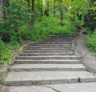 steps to Salthouse Woods