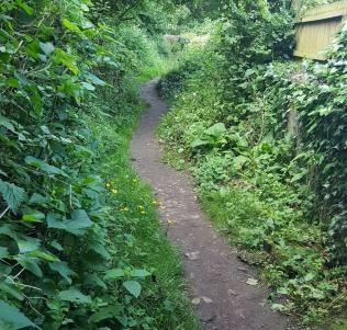 path behind cemetery allotments a