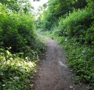 path behind cemetery allotments b