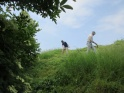 The June cut starts on Wain's Hill rampart slope