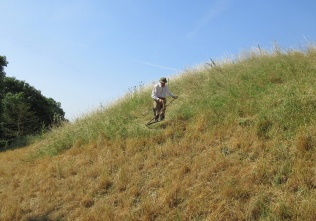 scything on the last section