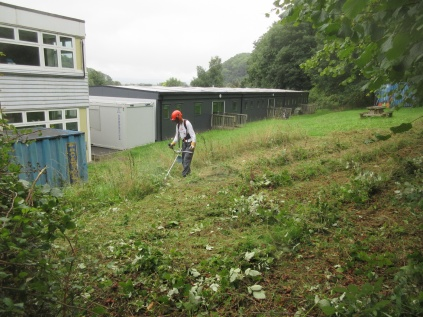 brush cutting behind the 6th Form Unit