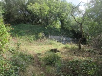 quarry glade cleared of nettles