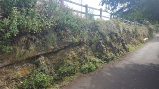 rock face tidied and path swept
