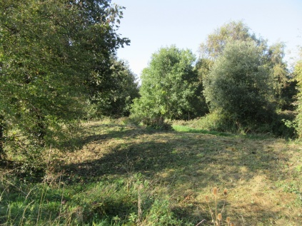 bank brush cut to improve grassland quality