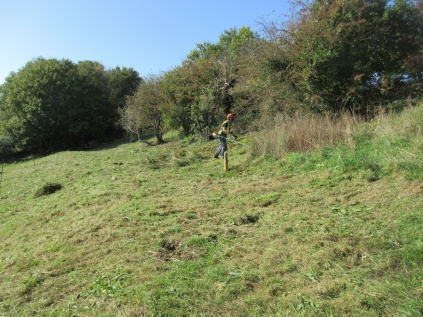 brush cutting a restored grassland slope