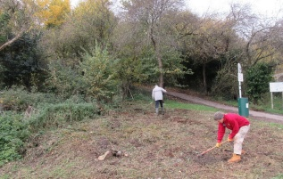 levelling the nettle patch