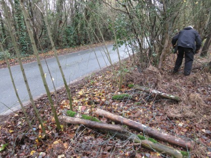 preparing to re-erect the roadside fence