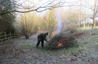 burning brash; catkins out on the hazel