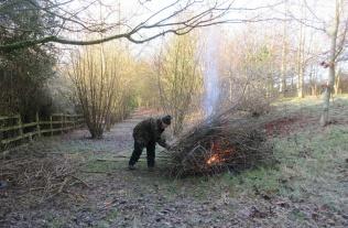burning brash; catkins out on the hazel