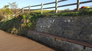 the coast path and long bench swept and tidied