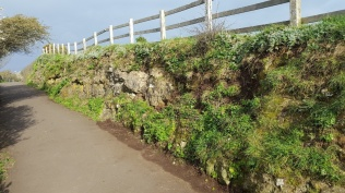 cemetery rock face, coastal path