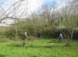 preparing prunings for burning