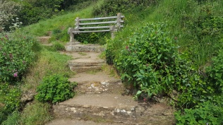 stone steps and seat tidied