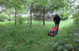 the new petrol mower makes its debut
