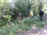 clearing nettles from the upper approach path to the battery