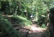 path through Salthouse Woods to the Lookout weeded and tidied
