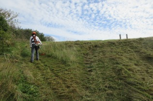 mowing a slope too steep for tractor access
