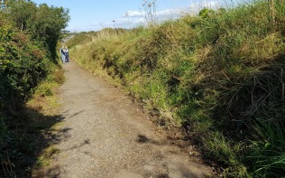 vegetation cut back on coastal path, Wain's Hill