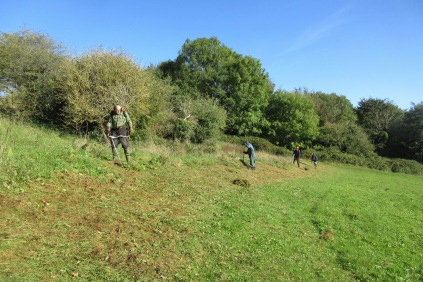 brush-cutting and raking the slope above the cricket pitch