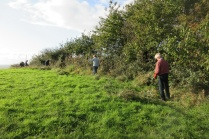 cutting back brambles along the 1923 path on Church Hill