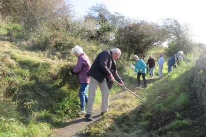raking up cut nettles along the central path