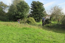 rough area beside cricket pitch brush-cut and raked off