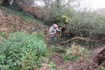 tidying up in the quarry