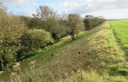 Wain's Hill rampart mown by Green Mantle contractor