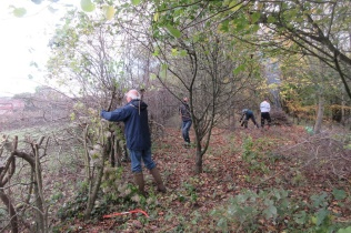 cutting the top hedge and preparing the bonfire