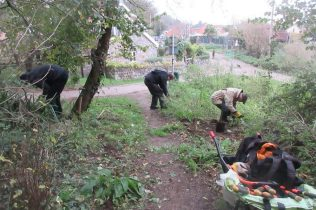 pulling and digging out nettles