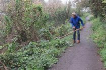 scything nettles bordering the path