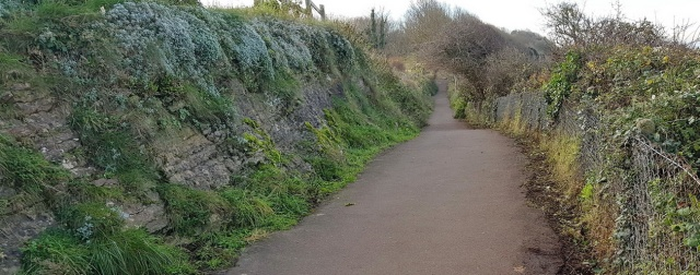 the coast path towards Wain's Hill