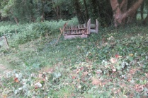 nettles and brambles by the bug hotel scythed