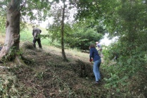 raking down cut nettles