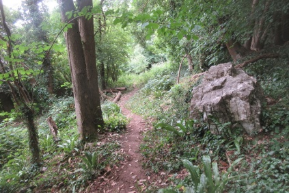 the lower trail past the feature rock