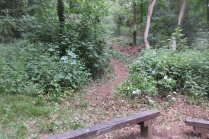 trail behind the benches re-opened