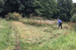 raking up mown vegetation on the northern slope