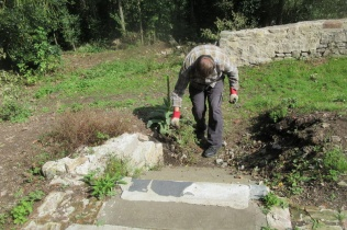 weeding the steps at the battery site