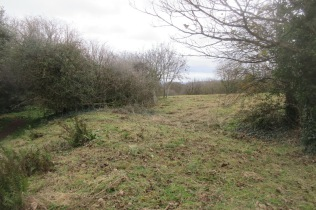 an area of restored grassland mown and awaiting raking off